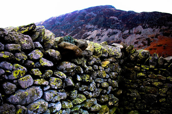 Colours and textures of a dry stone wall in Cumbria