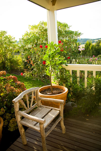 A wooden Chair on a flower-filled corner of the veranda at Aire Valley Guest House of the Gt. Ocean Road, Victoria, Australia