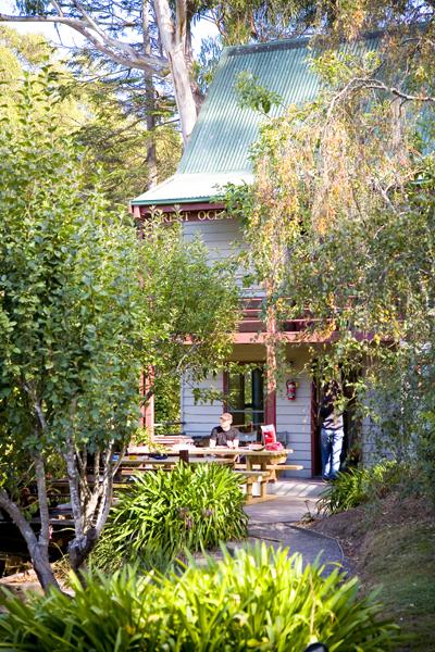 breakfast in paradise: YHA at Lorne in Victoria Australia