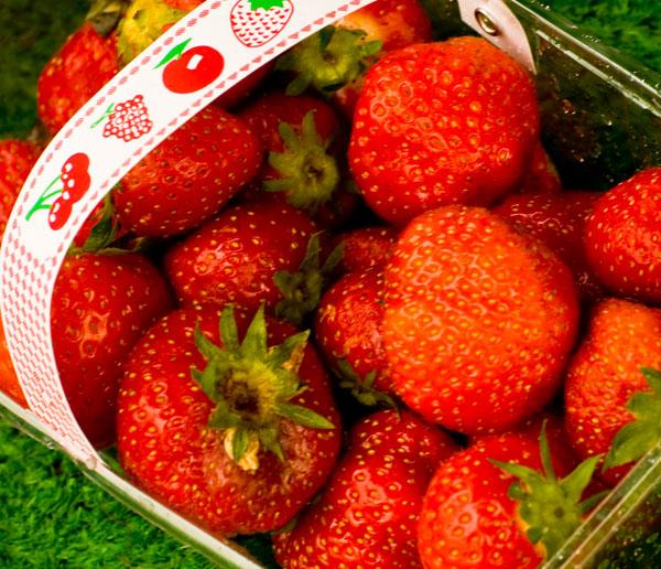 Southern Irish Strawberries