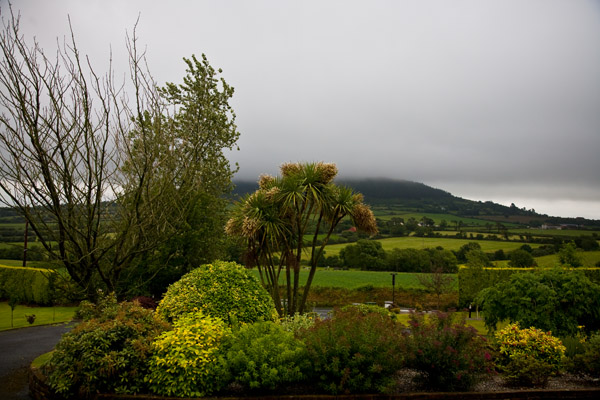 view from Hillside B&B in Gorey Souhern Ireland