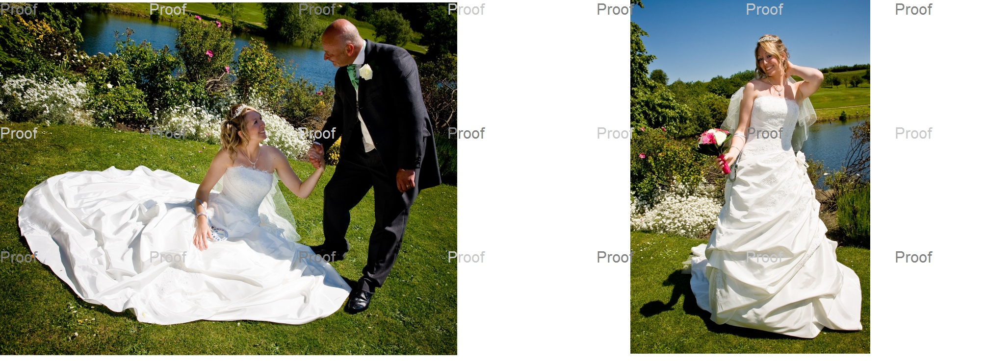 Dad gives the bride and hand up from her pose on the grass on the island at Waterton Park Hotel