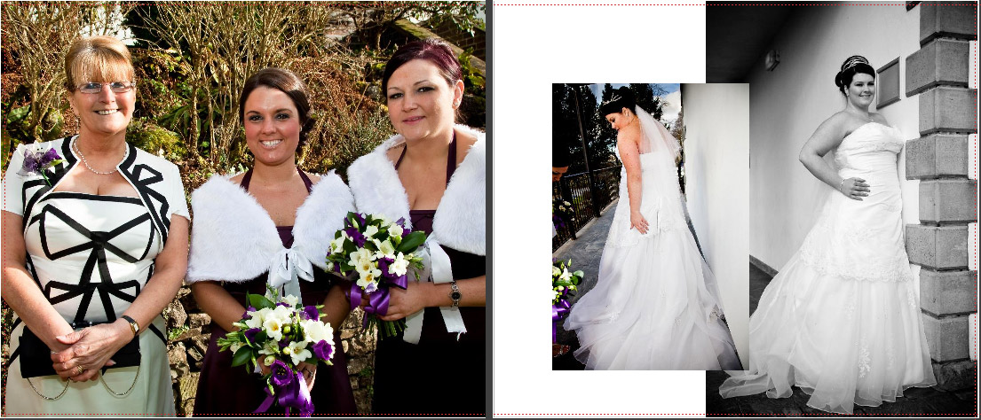 pictures of bride's mother, bridesmaids and the bridal portraits