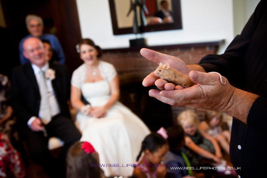 Bride watching the magician as he makes a little mouse appear