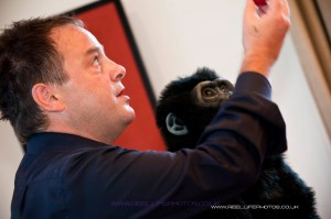 Wedding magic show with magician's monkey in Leeds