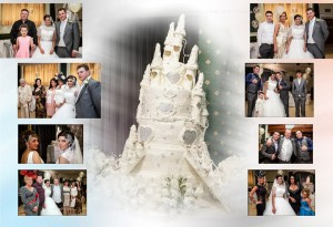 traveller castle wedding cake