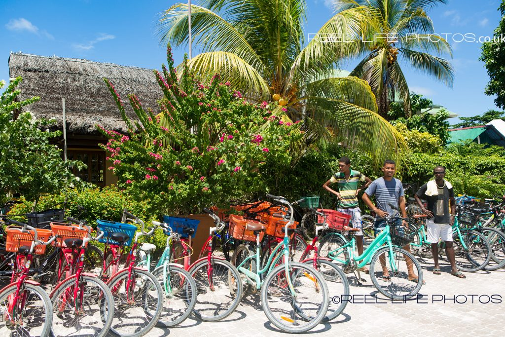 Bicycles for hire on La Digue, island in the Seychelles
